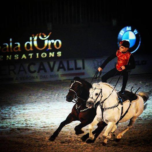 gala-d-oro-verona_fieracavalli_roro_nico_belloni